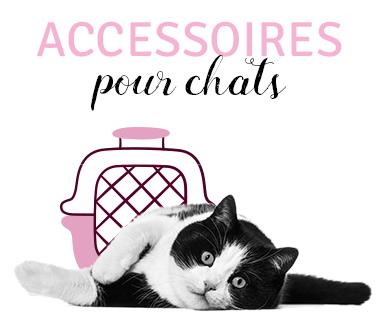Accessoires pour chats